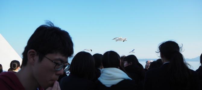 飛鳥キララン 5日目