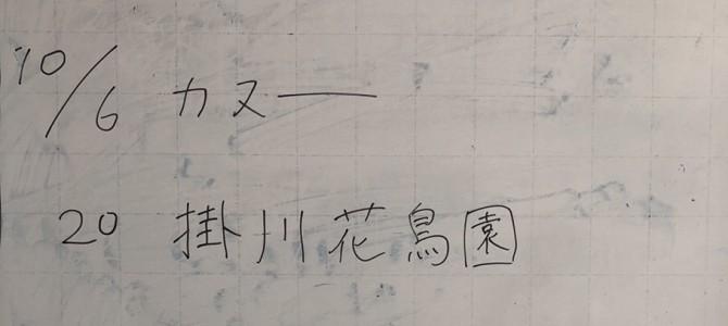 7/19 部会報告(浜松)